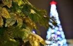 Жителей Искитима приглашают на открытие главной городской елки