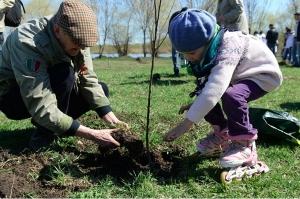 •В Новосибирской области появятся «Сады памяти», посвящённые землякам, отдавшим жизнь ради Победы