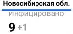 В Новосибирске выявили девятого заболевшего коронавирусом