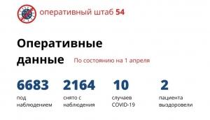 Официальные данные о ситуации с коронавирусом в Новосибирской области на вечер 1 апреля