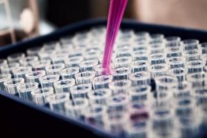 В России за сутки выявили 771 случай заболевания коронавирусной инфекцией