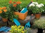 Искитимцам: В дополнительный перечень товаров в нерабочие дни включены товары для садоводства и огородничества