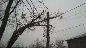 Нарушенное шквалистым ветром электроснабжение потребителей региона восстановлено