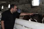 13 миллионов на развитие своего крестьянско-фермерского хозяйства получил фермер из Тальменки