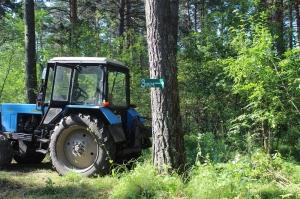 Жители заречной части Искитима блокировали вырубку леса в районе лыжной базы