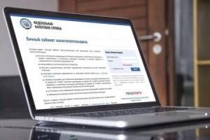 Более 30 тысяч новосибирских налогоплательщиков подключились к Личному кабинету с начала года