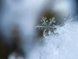 Синоптики прогнозируют: зима начнется уже в октябре