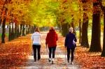 В Искитиме ко Дню пожилых людей пройдет акция «Шаги здоровья»