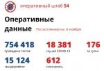Еще 176 случаев заражения коронавирусом подтверждено в Новосибирской области за сутки
