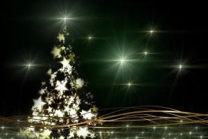 Новый год будет: в парке им. Коротеева готовятся установить городскую елку