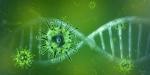 Более трехсот искитимцев с начала нового года заразились коронавирусом