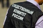 В Новосибирской области возбуждено уголовное дело по факту смерти трех человек в результате пожара