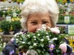 Большинство пенсионеров Новосибирской области — женщины
