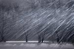 О штормовом ветре и метели предупредили новосибирцев в МЧС