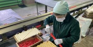 Новосибирский завод искусственного волокна сможет экспортировать промышленные взрывчатые вещества