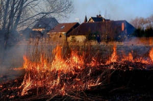 В преддверии наступления весеннее-летнего пожароопасного периода искитимцев предупреждают