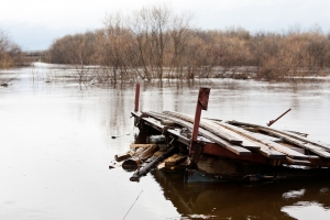 В Койнихе начал подниматься уровень воды. Пик паводка придется на текущую неделю