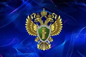 В Искитиме прокуратура организовала проверку в связи с публикациями СМИ о разрушении дороги большегрузом