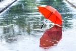 Вот и дождичек в четверг!