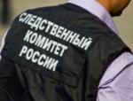 Задержан Дмитрий Казаков, подозреваемый в совершении убийства Людмилы Кайгородовой, сообщает Следственный комитет
