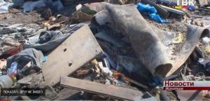 Несанкционированная свалка мусора рядом с р. Койниха может быть опасной для экологии