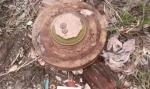 Предмет, похожий на мину, обнаружен в р.п. Линево