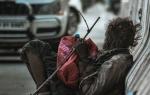 Социальные сертификаты получат бездомные Новосибирской области