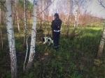 За минувшую неделю в лесах Новосибирской области пропали пять человек, один из них - в Искитимском районе