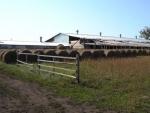 Крупный грант на развитие хозяйства получил фермер из с. Сосновка