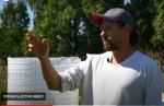 Грецкие и другие сорта орехов начал выращивать фермер в Искитимском районе
