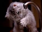 20-21 сентября не будет холодной воды по ул.Радиаторная в Искитиме