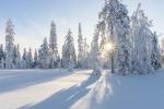 Аномально холодную зиму спрогнозировали синоптики в Новосибирске